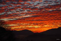 Quell'ultima alba. (stefano.chiarato) Tags: alba sunrise cielo sky paesaggio landscape nuvole clouds pentax pentaxk70 pentaxlife pentaxflickraward
