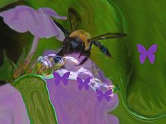 The Secret Lifeline (kfocean01) Tags: nature photoshop photomanipulation bee insect butterflies purple green flower flowers paint art abstract bubbles water netartll artdigital awardtree painting creativephotography