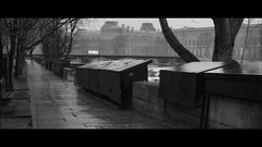 a gloomy day along the Seine (Nico Geerlings) Tags: ngimages nicogeerlings nicogeerlingsphotography leicammonochrom 50mm summilux paris seine bouquinistes quaideconti museedulouvre pontdesarts blackandwhite cinematic cinematography streetphotography