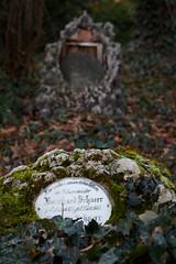 Johannisfriedhof Jena (birk.noack) Tags: deutschlandthüringenjenajohannisfriedhoffriedhofalterfriedhofgrabgrabsteinefeugermanythuringiacemeteryoldcemeterygravetombstoneivy deutschland thüringen jena johannisfriedhof friedhof alterfriedhof grab grabstein efeu germany thuringia cemetery oldcemetery grave tombstone ivy