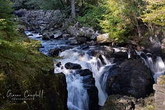 Photo of The Falls of Braan