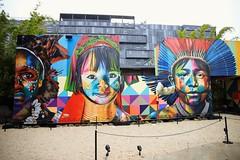 Wynwood walls Miami (SlKam) Tags: winwood graffiti