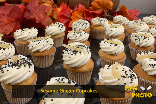 "Sesame Ginger Cupcakes • <a style=""font-size:0.8em;"" href=""http://www.flickr.com/photos/159796538@N03/49318635982/"" target=""_blank"">View on Flickr</a>"