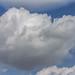 Sky Puff 07