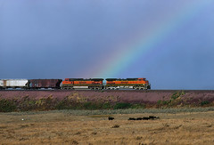Rainbow Heritage (Moffat Road) Tags: burlingtonnorthernsantafe bnsf heritagei dash9 ge c449w dpu reardpu rainbow train locomotive railroad browning montana mt bnsfhilinesub mariaspassroute graintrain 1002