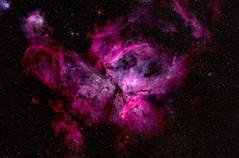 My Favourite Nebula (ian_inverarity) Tags: carina nebula stars nikon astrophotography 600mm astrometrydotnet:id=nova3859489 astrometrydotnet:status=solved