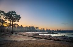 The breeze at dawn has secrets to tell you. Don't go back to sleep. (Ingeborg Ruyken) Tags: ochtend morning sunrise 500pxs natuurmonumenten boxtel natuurfotografie autumn fall kampina herfst