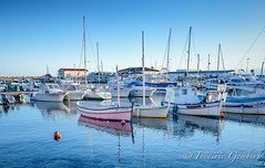 quiet afternoon (frederic.gombert) Tags: january xmas winter sea seascape water boat fish fisherman seaside sony light sun sunny