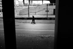 inside out (gato-gato-gato) Tags: leica leicammonochrom leicasummiluxm35mmf14 mmonochrom messsucher monochrom schweiz strasse street streetphotographer streetphotography suisse svizzera switzerland zueri zuerich zurigo black digital flickr gatogatogato gatogatogatoch rangefinder streetphoto streetpic streettogs tobiasgaulkech white wwwgatogatogatoch zürich kantonzürich manualfocus manuellerfokus manualmode schwarz weiss bw monochrome blanc noir strase onthestreets mensch person human pedestrian fussgänger fusgänger passant sviss zwitserland isviçre zurich