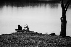 Solitude. (LACPIXEL) Tags: solitude soledad loneliness alone seul solo étang estanque pond laguna arbre tree árbol vélo bike bicicleta homme man hombre noirbl blackwhite flickr lacpixel