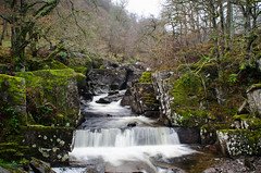 Bracklinn Falls (Csaba Varju) Tags: bracklinn fall falls waterfall scotland scotlandphotography scottish scenery landscape nature nikon d5100 callander long exposure