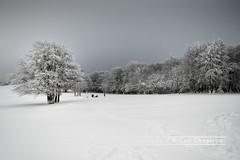 Les trois fours, Vosges region of France (Bruno Chapiron) Tags: montagne nature neige nourriture restauration saisons vosges vosgesimages