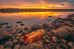 Starting off the New Year II (PNW-Photography) Tags: richland washington easternwashington nature morning sunrise colorful color colors columbiariver river reflection bright leaves leaf newyear orange outside water waterscape landscape ngc