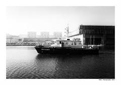 """""""Dans Les Traces Du Poulpe Ou Pour L'Attendrir Faut Taper Dessus... 11"""" (TBWLC Photography) Tags: fdrouet tbwlc nb bw monochrome boat bâteau port saintnazaire penhoët nikon d750"""