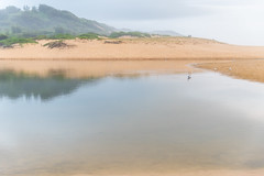 Misty Morning at the Lagoon (Merrillie) Tags: daybreak wamberalbeach sand sunrise cloudy dawn surf centralcoast wamberal morning newsouthwales clouds earlymorning nsw rainclouds beach ocean lagoon sky landscape coastal australia outdoors waterscape nature coast water seaside
