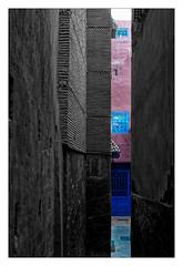 Ruelle (Jean-Louis DUMAS) Tags: maroc rue ruelle ocre palmier arbre voyage voyageur trip travel traveler ville marrakech blackandwhite blackwhite blackwhitephotos noiretblanc noireblanc noirblanc colors couleurs multicouleurs sony