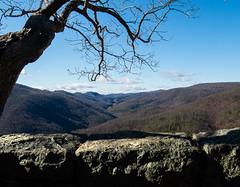 Blue Ridge Parkway (Hayseed52) Tags: blueridgeparkway moutains tree rocks