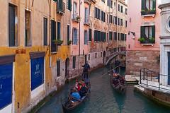 Venezia (Antonio Vaccarini) Tags: venezia venice venise venedig venecia italia italy italien italie canoneos350d canonef24105mmf4lisusm antoniovaccarini