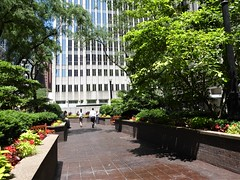 Chicago, Northern Trust Bank Garden (Mary Warren 14.7+ Million Views) Tags: chicago urban architecture building garden park nature flora plants trees blooms blossoms flowers