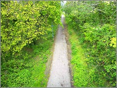 Rural Walk and Cycle Track , (** Janets Photos **) Tags: uk hull eastyorkshire suttononhull oldrailwaylines walks tracks