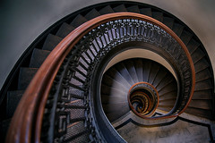Fibonacci Spiral (lfeng1014) Tags: mechanicsinstitutelibrary fibonaccispiral fibonacci spiral spiralstaircases library sanfrancisco california usa structure architecture stairs spiralstairs railing canon5dmarkiii ef2470mmf28liiusm travel light