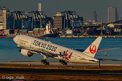 MAK-3676 (oga_mak) Tags: makogawauchi ogamak 東京都 日本 500mm eos eos1dxmarkii canon myeosphoto airport aircraft airplane aviation boeing b772 boeing777200 airways tokyo2020livery japanairlines hanedaairport hikoukiclub everybodyphoto キヤノン 羽田空港 飛行機撮り隊 飛行機大好き 飛行機写真 飛行機のある風景 飛行機倶楽部 飛行機 写真好きな人と繋がりたい カメラ好きな人と繋がりたい エビフォト mytokyois