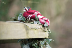 The Lost Hat (jillyspoon) Tags: ff hff fencefriday happyfencefriday hat thelosthat fence wooden ivy redhat lostandfound outdoors sony sonya7iii sony85mm barbedwire knitted woolyhat knittedhat knit winterwoolies