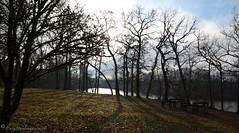 """Premier petit matin soleil de 2020. 🍀   Bonne année à tous 🌹 (Brigitte .. . """"Tatie Clic"""") Tags: janvier hiver monflanquin paysage arbres contrejour lac eau soleil lotetgaronne aquitaine francesudouest 2020020110"""