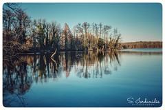 Reflections, Krickenbecker Seen (Stathis Iordanidis) Tags: lake lakeside mirroring reflections trees blue water sky nature amazing landscape fujifilm xt1 fujinon breathtakinglandscapes