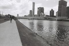 Brisbane (goodfella2459) Tags: nikonf4 afnikkor24mmf28dlens kodaktrix400 35mm blackandwhite film analog city brisbane queensland water buildings river bwfp