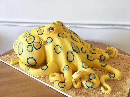 Sculpted Blue Ringed Octopus Cake