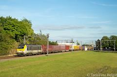 Lineas 1338 Y.Kortrijk-West (TreinFoto België) Tags: 1338 alstom lineas hle 13 40318 milano zeebrugge po novatrans kortrijk heule lijn 66 belgique belgien belgië belgium