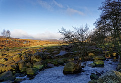 Burbage brook. (S.K.1963) Tags: burbage brook longs haw estate peak district derbyshire stream river carl wark higger tor moorland landscape trees sky sony a7iii 24 105mm f4