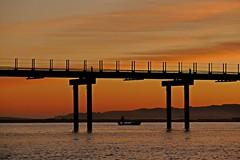 Caceando (alfonsocarlospalencia) Tags: bahía santander pescador cacea amanecer puente contraluz silencio anaranjado horizonte agua luz negro ensueño septiembre reflejos cielo paraíso encuadre