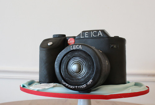 Sculpted Camera