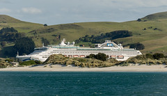 Sea Princess leaving Otago Harbour (003/366) (johnstewartnz) Tags: seaprincess princesscruises otago ship canon canonapsc apsc eos 100canon 7dmarkii 7d2 7d canon7dmarkii canoneos7dmkii canoneos7dmarkii 70200mm 70200 70200f28 70200mmf28 ef70200f28lisusmiii canonef70200f28lisusmiii 003366 day003 project366 366project 366the2020edition 3662020 day3366 03jan2020 onephotoaday oneadayonephotoaday2020