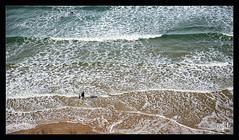Transmission - Plage des Basques - Biarritz (christian_lemale) Tags: biarritz plage basques pays basque plagedesbasques personnes people nikon z6