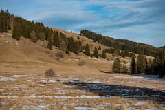 ALMWEIDE IM WINTER . ABANDONED ALPINE MEADOW (LitterART) Tags: alm weide meadow steiermark österreich alps alpen weite freedom almenland sonyrx100iv