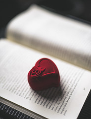 Heart (Fe_Lima) Tags: paper red closeup stilllife positiveemotion publication heartshape communication text indoors love table book nopeople selectivefocus emotion document open focusonforeground nonwestern scriptheart heartinabook openbook
