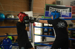 47086 - Jab (Diego Rosato) Tags: criterium giovanile young little boxer piccolo pugile boxelatina boxe boxing pugileto nikon d700 tamron 2470mm rawtherapee ring match incontro punch pugno jab