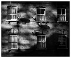 _DSF5733 (gillesporlier) Tags: londres parabolique antennes nikon dark sombre light lumiere d850 landscape urban urbain repetition windows fenetres
