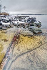Wood in water (Kimmo Järvinen) Tags: landscape tokina d500 nikon lake snow finland pohjoiskarjala beach maisema wideangle hdr tokina1116mmf28 atx116prodx
