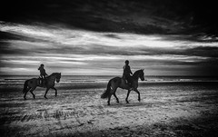A long way... (Ageeth van Geest) Tags: 2 two appleiphone8 horse horses beach strand sea zee hoekvanholland thenetherlands walking walk hearts sand outside light water sunset horizon girls