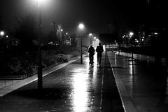 In the shiny alley (pascalcolin1) Tags: paris13 homme man femme woman couple enfant child pluie rain nuit night lumière light reflets reflection réverbères lamppost allée alley photoderue streetview urbanarte noiretblanc blackandwhite photopascalcolin 50mm canon50mm canon