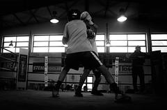 46732 - Hook (Diego Rosato) Tags: boxe boxing pugilato boxelatina criterium giovanile young little boxer piccolo pugile nikon d700 tamron 2470mm rawtherapee bianconero blackwhite ring match incontro pugno punch maestro master hook gancio