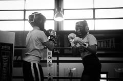 46655 - Match (Diego Rosato) Tags: boxe boxing pugilato boxelatina criterium giovanile young little boxer piccolo pugile nikon d700 tamron 2470mm rawtherapee bianconero blackwhite ring match incontro