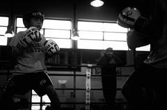 46722 - Match (Diego Rosato) Tags: boxe boxing pugilato boxelatina criterium giovanile young little boxer piccolo pugile nikon d700 tamron 2470mm rawtherapee bianconero blackwhite ring match incontro maestro master
