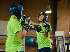 46882 - Hook (Diego Rosato) Tags: boxe boxing pugilato boxelatina criterium giovanile young little boxer piccolo pugile nikon d700 tamron 2470mm rawtherapee ring match incontro pugno punch hook gancio