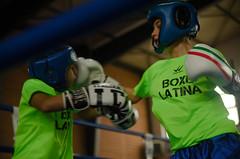 46720 - Hook (Diego Rosato) Tags: boxe boxing pugilato boxelatina criterium giovanile young little boxer piccolo pugile nikon d700 tamron 2470mm rawtherapee ring match incontro pugno punch hook gancio