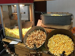 """POP Corn • <a style=""""font-size:0.8em;"""" href=""""http://www.flickr.com/photos/186296875@N03/49323755668/"""" target=""""_blank"""">View on Flickr</a>"""